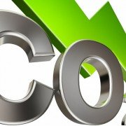 Kokosfasern binden Kohlenstoffdioxid
